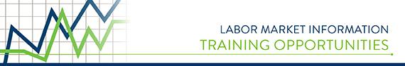 lmi-training